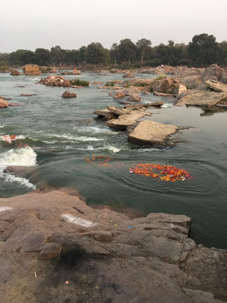 marigolds floating on the Betwa River, Orchha, Madhya Pradesh, India